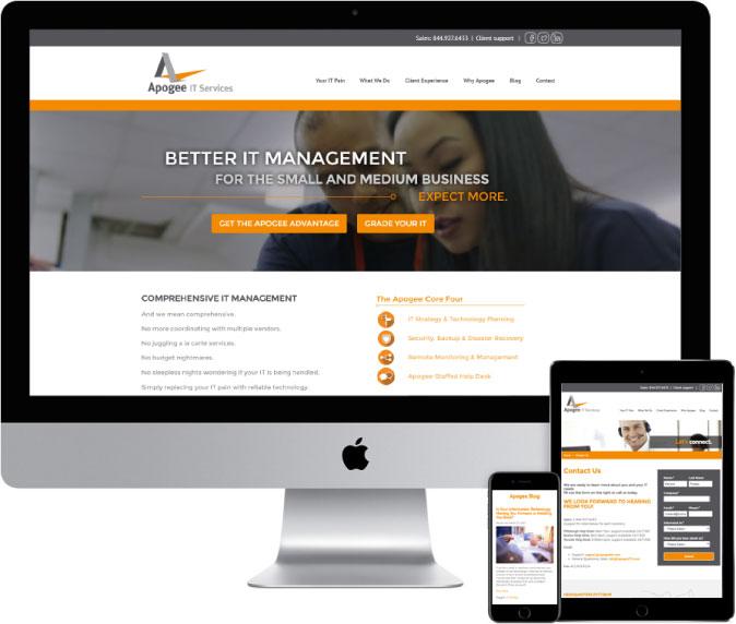 Pic-homepage-apogee.jpg