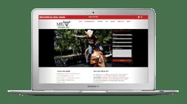 PIC-website-pittsburgh-website-design-mechanicalbulls.png